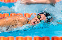 UM Hurricanes Swim/Dive Dual Meet